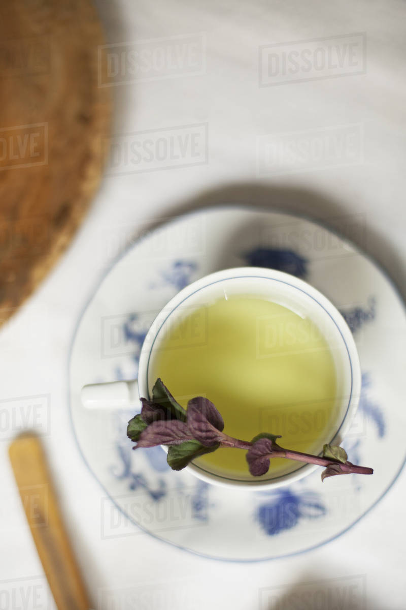 A cup of tea, clear coloured tea in a china cup, with a sprig of aromatic mint.  Royalty-free stock photo