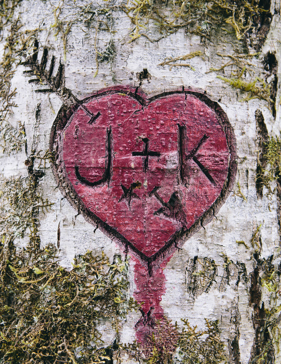 J+K and heart symbol carved in moss covered Alder tree, Olympic NP Royalty-free stock photo
