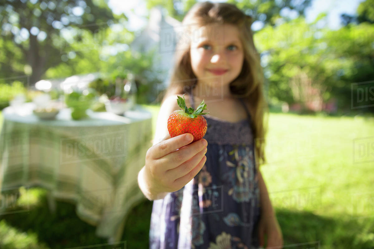 Children And Adults Together. A Young Girl Holding A Large Fresh Organically Produced Strawberry Fruit.  Royalty-free stock photo