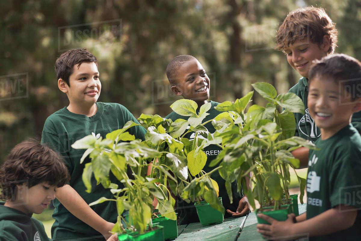 Children in a group learning about plants and flowers, in an afterschool club or summer camp.  Royalty-free stock photo