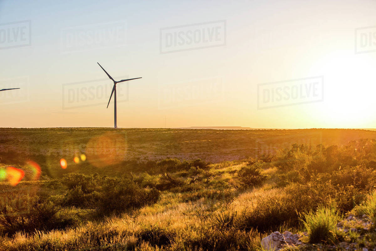 Windmill on field during sunset Royalty-free stock photo