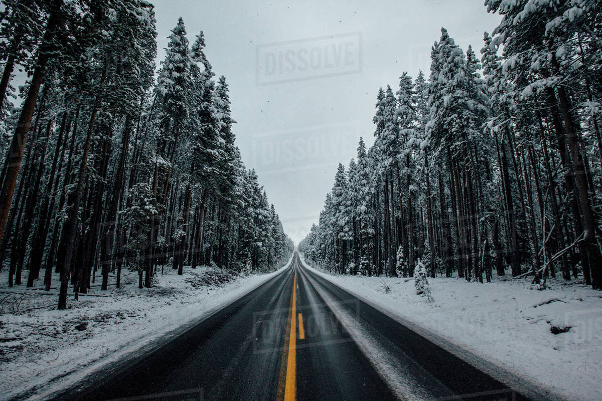 Road amidst snow covered trees against sky Royalty-free stock photo