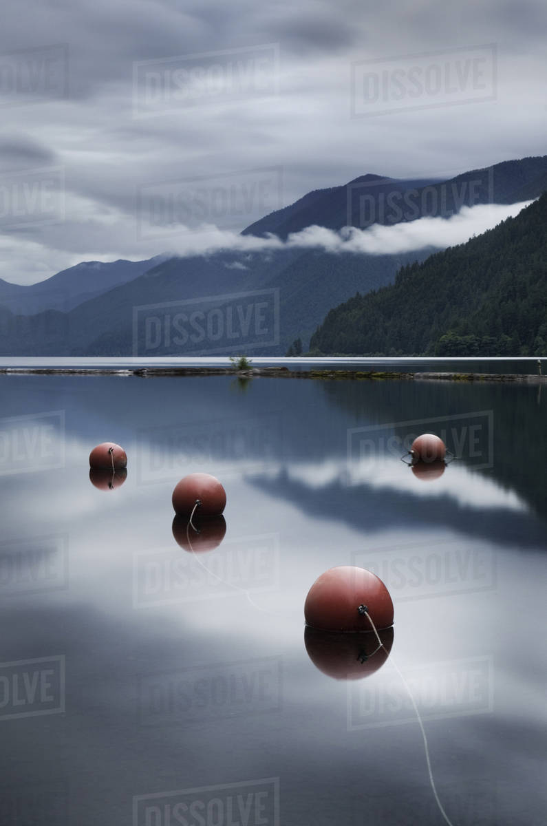 Buoys floating in still remote lake Royalty-free stock photo