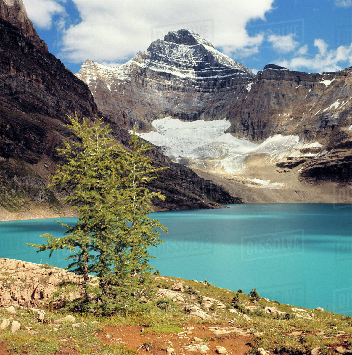 Canada, British Columbia, Yoho National Park. Lake McArthur, the color of turquoise, is surrounded by the Canadian Rockies in Yoho National Park, a World Heritage Site, British Columbia, Canada. Royalty-free stock photo