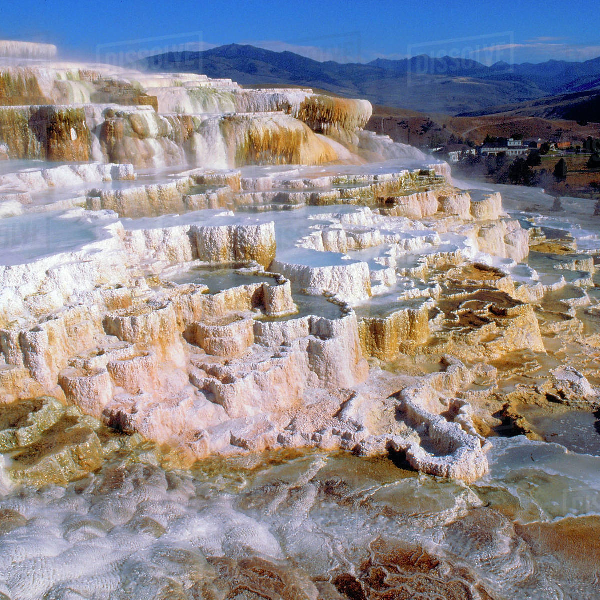 USA, Wyoming, Yellowstone National Park, Minerva Terrace. Mammoth Hot Springs Rights-managed stock photo