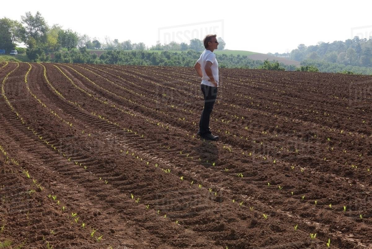 Man standing on an agricultural field Royalty-free stock photo